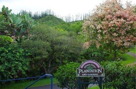 Senator Fong 39 S Plantation And Gardens Oahu Hawaii Places I Have Visitied Pinterest
