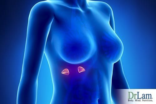 Adrenal exhaustion symptoms in females