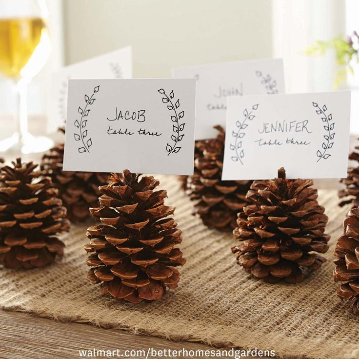 Great DIY (and natural!) thanksgiving or holiday place card idea—just gather pine cards from your yard and voila.