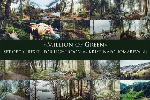 MILLION OF GREEN-Set of 20presets Lr by Krisp_Krisp on @creativemarket