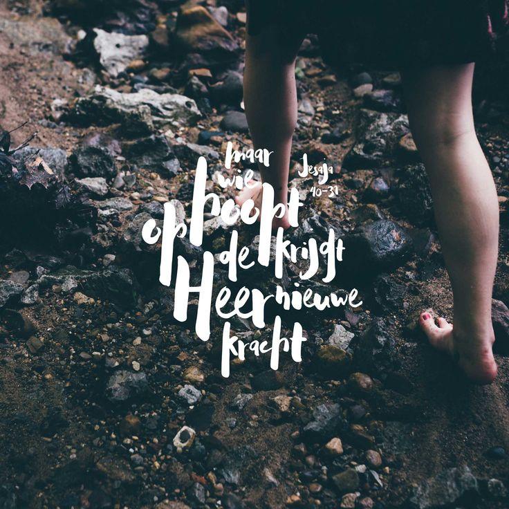 Maar wie hoopt op de HEER krijgt nieuwe kracht: hij slaat zijn vleugels uit als een adelaar, hij loopt, maar wordt niet moe, hij rent, maar raakt niet uitgeput. Jesaja 40:31  #Hoop, #Kracht, #Heer  https://www.dagelijksebroodkruimels.nl/jesaja-40-31-v2/