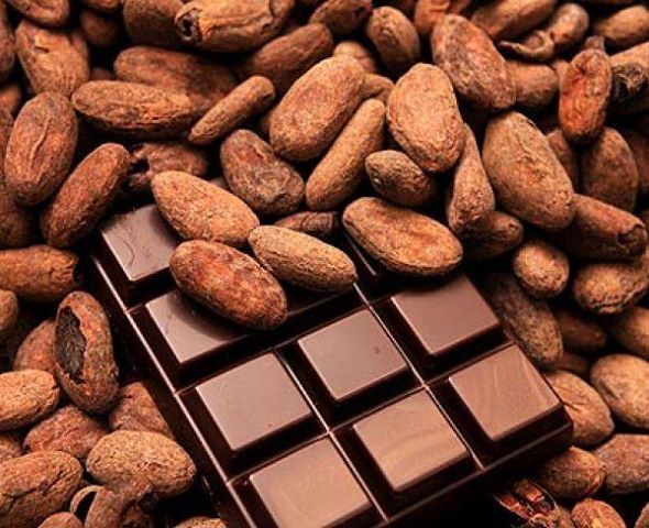 El cacao superfood y meda antioxidante