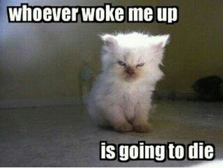 How I feel when I amabout to find out if my little sis or brother woke me up....