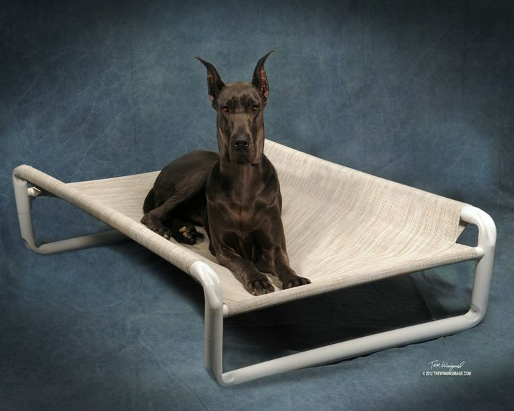 26 best dog beds for great danes images on pinterest