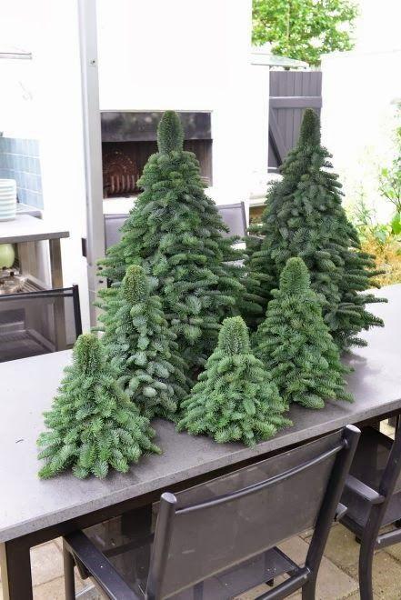 Cute christmas trees.