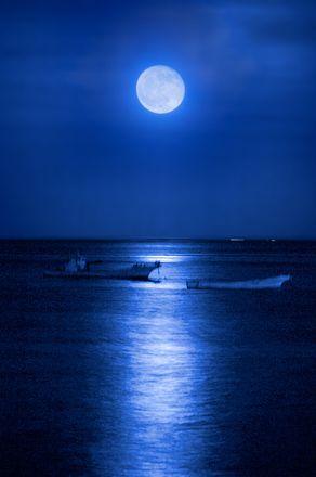食と月のパワーを手に入れる伊豆の月見旅。
