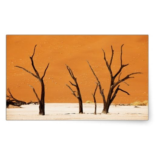 desert landscape with dead trees