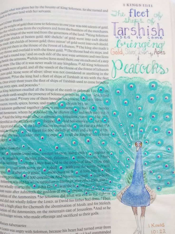 Featured Artist-VALERIE MATYAS 1 KINGS 10:22 My six year old son receives a Ranger Rick, Jr. magazine in the mail each month.  In early 2017, one issue had a gorgeous picture of a peacock.  I couldn't get this peacock off my mind.  On a whim, I searched Biblegateway.com to see if the word peacock was found in the bible.  It sure is! Bible journaling has trained me to look at my world in the light of Scripture. 1 Kings 10:22