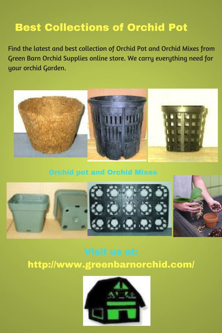 Find the latest collection of Orchid Pots and Orchid Mixes from Green Barn Orchid Supplies.