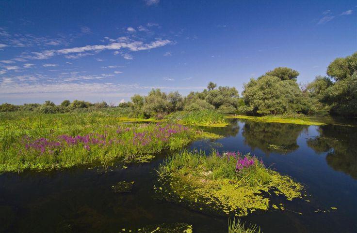 Danube Delta Romania Black Sea Delta Dunarii sulina