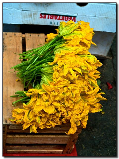FLOR DE CALABASA Zuccini flowers: A wonderfull delicacy, used in soups and as stuffings in various dishes. Oaxaca, Mexico