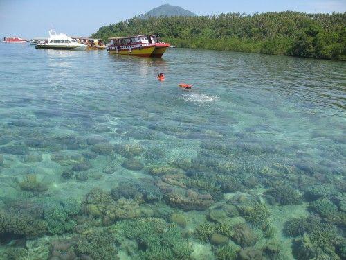Bunaken Snorkeling Area