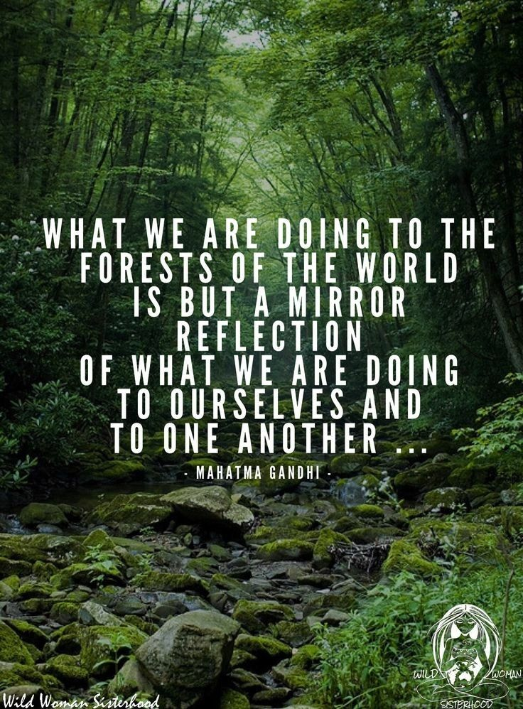 Pin By Tonjalea On Quotes Part 2 Pinterest Quotes Earth And