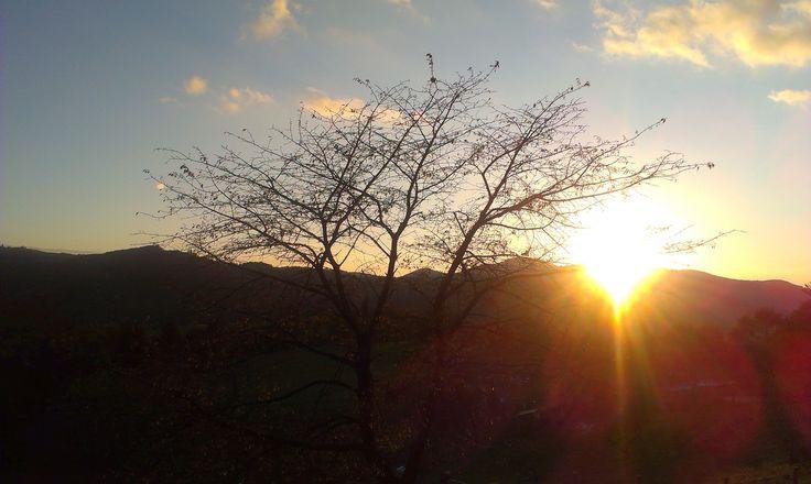 sunshine. kopanice.