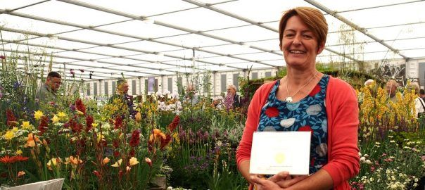 Daisy Roots Nursery Wins Gold at Chelsea! - Pumpkin Beth
