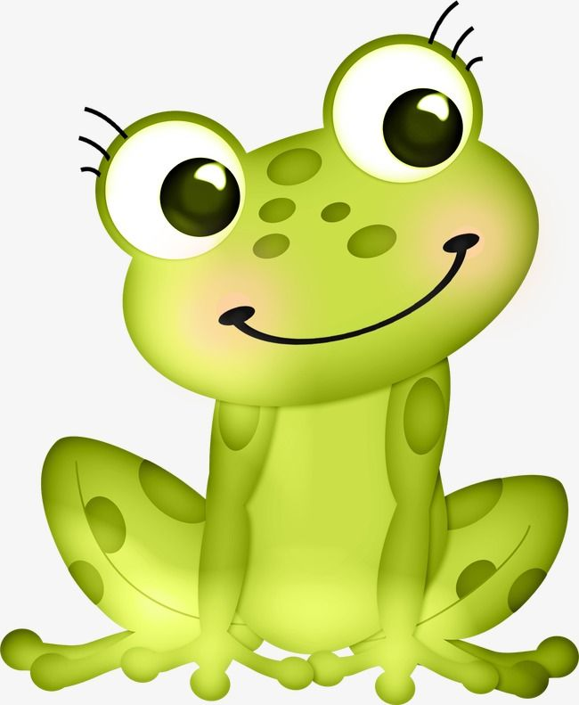 Cute Frog Frog Clipart Cute Clipart Frog Png Transparent Clipart Image And Psd File For Free Download Frog Art Cute Frogs Frog Illustration