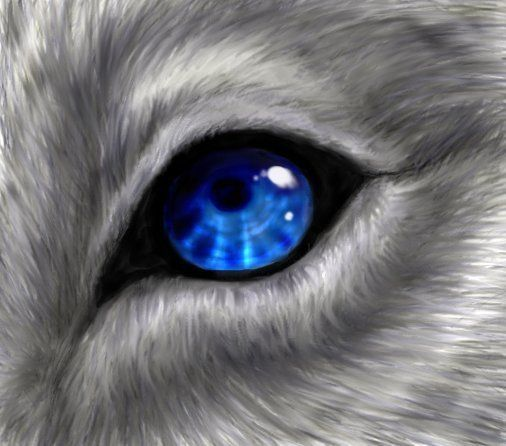 Black wolf with blue eyes drawing - photo#29