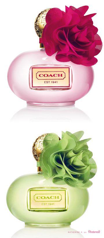 COACH - Poppy Citrine Blossom + Poppy Fresia