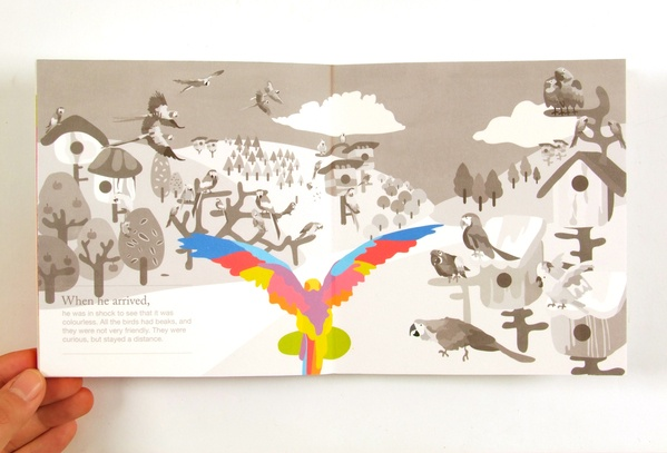 The Colour Splasher, is 6 image narrative story book that follows the Journey of a bird with a parrot nose. The stories reflects on themes on acceptable, love and sacrifice.