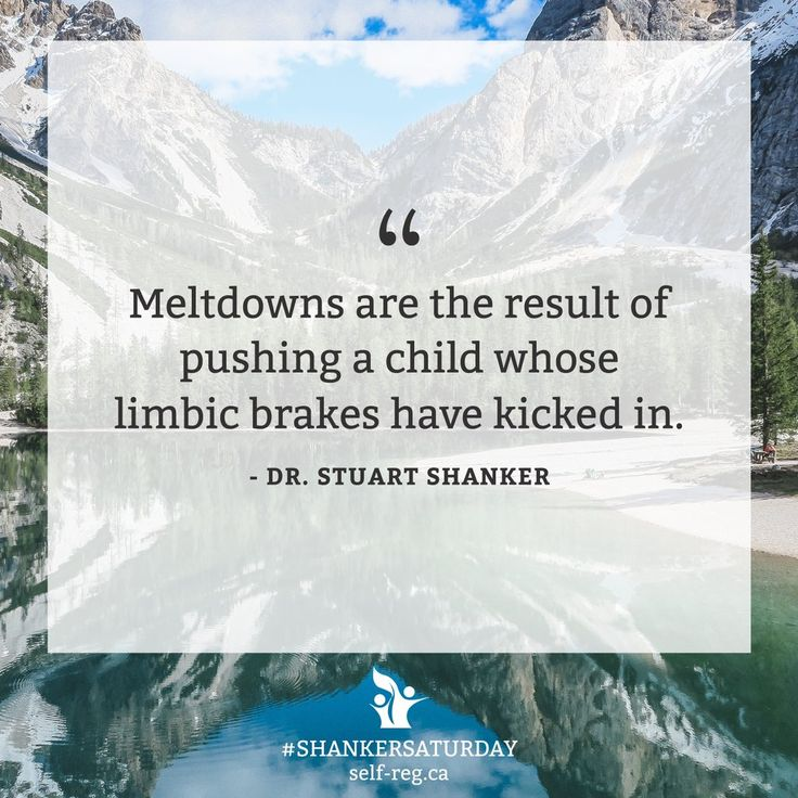 """Starting to see """"meltdowns"""" and """"explosions"""" this way can change the way we see the child as a whole. #SelfReg is a paradigm shift.   PS. Our #ShankerSaturday and #SelfRegSunday images have a new look! What do you think? https://t.co/LiTaLjDbGF"""