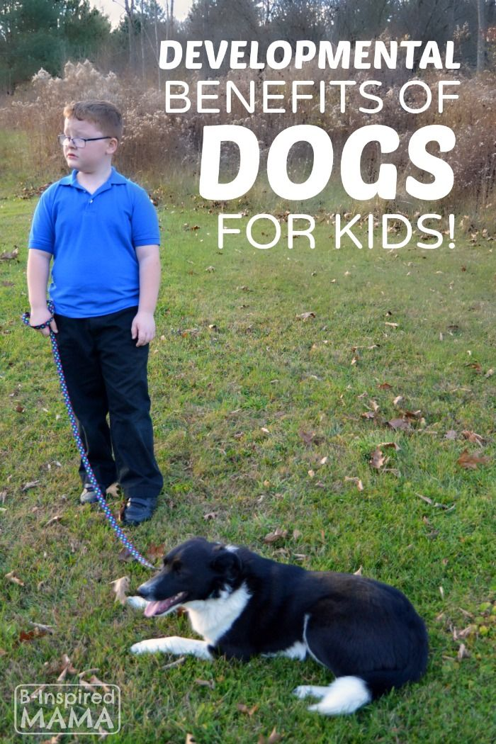Developmental Benefits of Having a Dog for Kids - Does your family have a dog? How do YOU think it benefits kids to have one?   #ad #IamsDifference