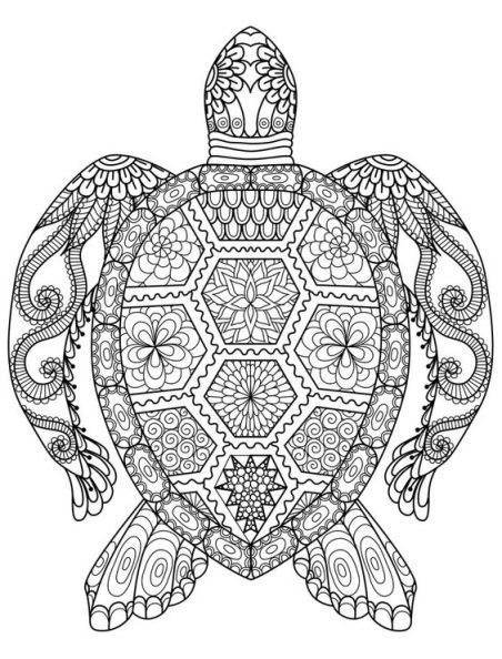 80 best Adult coloring pages images on Pinterest Turtles, Adult - best of free coloring pages of endangered animals
