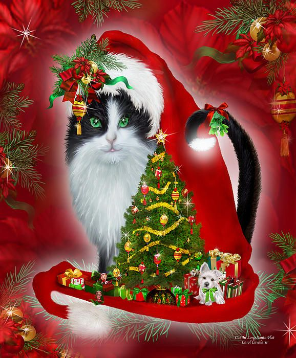 Christmas Tree Made Of Black Cats: 1000+ Images About Cat In Fancy Hat Art On Pinterest