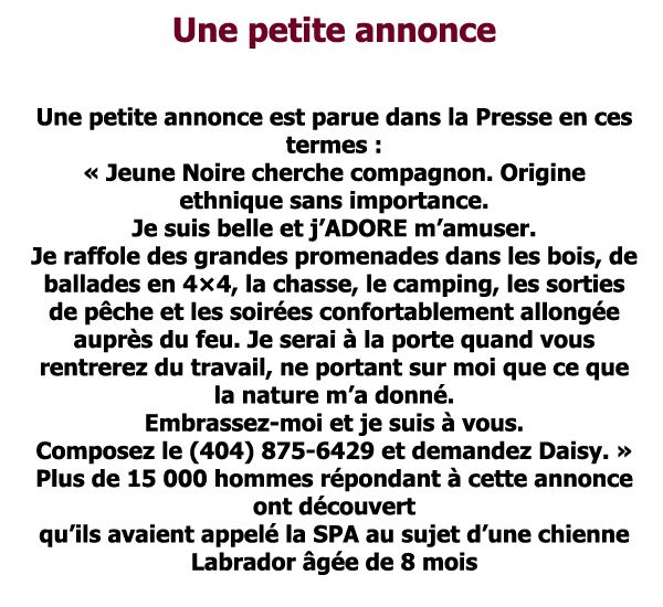 L'annonce !!! - Zapping Web