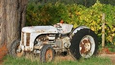 Ten Minutes by Tractor - fabulous restaurant, wine and vineyard