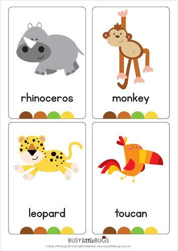 """Our set of printable """"Jungle Animal Flash Cards"""" are a great learning tool for early literacy. All brightly coloured and of high quality. There are 16 brightly coloured, high quality printable flash cards in this pack."""