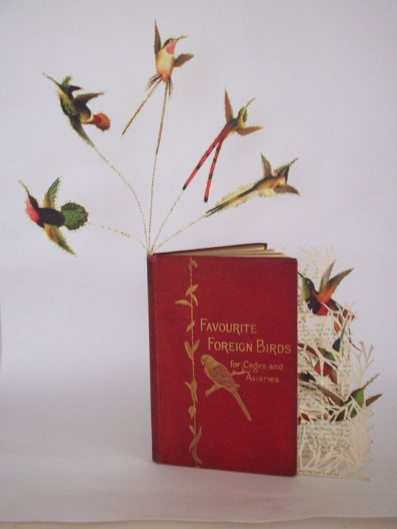 Boek sculptuur kolibries boek boek cadeau boek kunstliefhebber verlaten aanwezig veranderde boek vogels van papier sculptuur boek aanwezig vogel liefhebber natuur