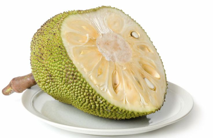 Jackfruit - Can This Nutritional Powerhouse Prevent Widespread Famine