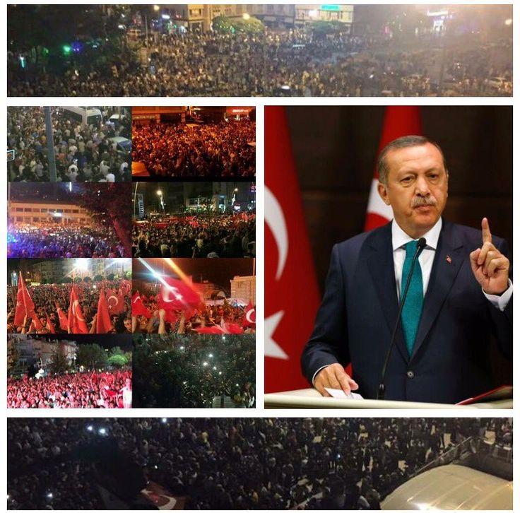 (133) #Turkey hashtag on Twitter