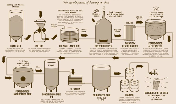Brewing Process for craft beers.....interesting.