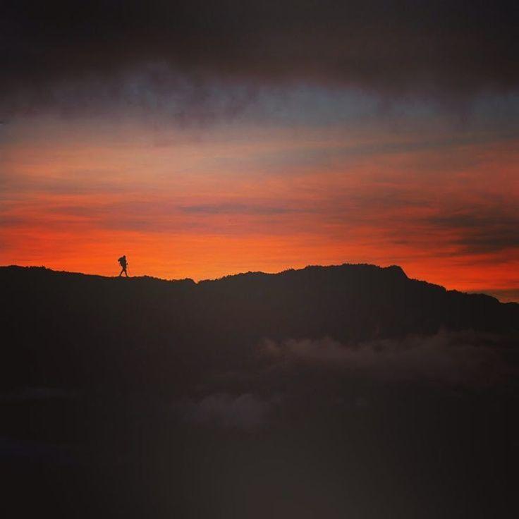 #isjon_isgood Misty mountain hop. Highland adventures in PNG . Gutpela Tru #papuanewguinea #explore #sunrise #expedition #png #solitude #hiking #inspiration #adventure #trekking #explorer
