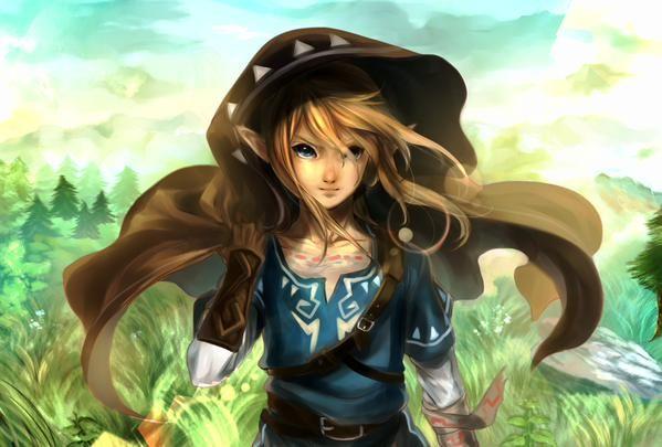 The Legend of Zelda | Breath of the Wild | Link