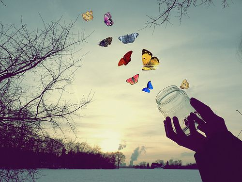 Возбуждение как освобождение нравится, но бабочки слишком добрые создания для передачи взрывного в моем лейтмотиве