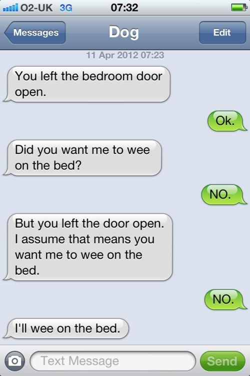 texts from dog Internet Site, Beds, Laugh,  Website, Web Site, Dog Texts, Funny, Dogs Texts, Dogs Awesome