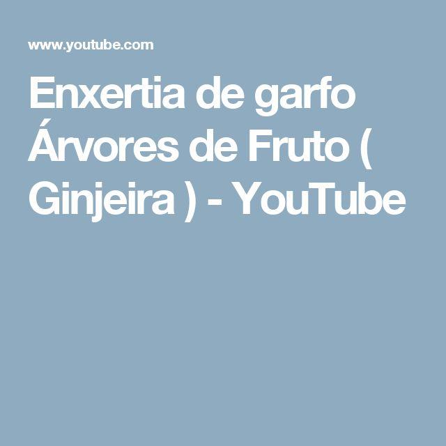 Enxertia de garfo Árvores de Fruto ( Ginjeira ) - YouTube