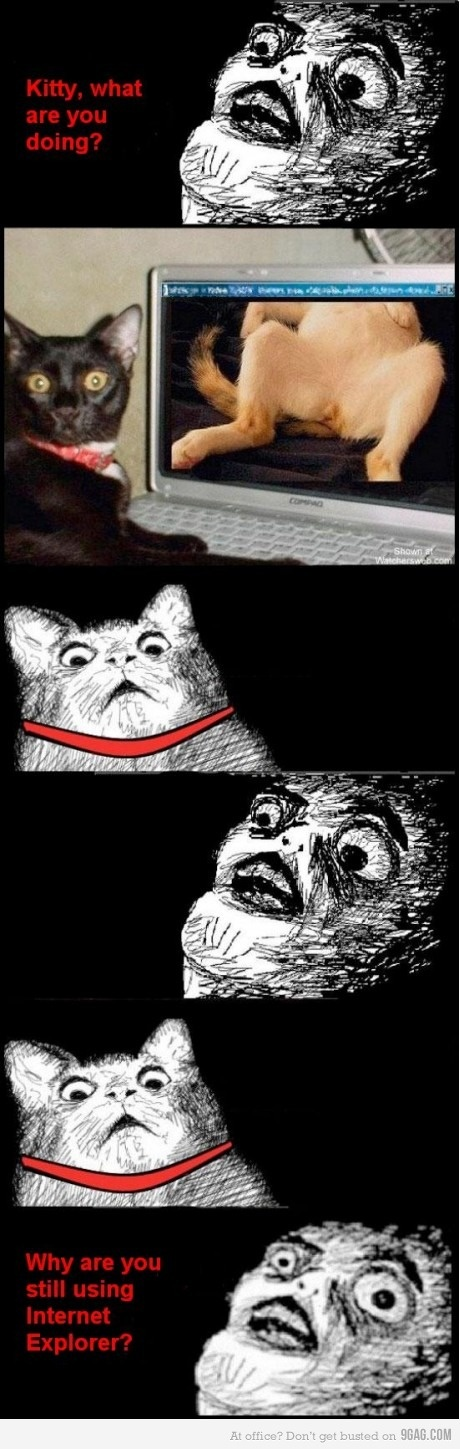 Kitty, what are you doing??: Cat Watches, Funny Pics, Funny Collection, Kitteh Lolz, Funny Meme, Funny Stuff, Funny Animal, Cat Meme, Funny Shiz