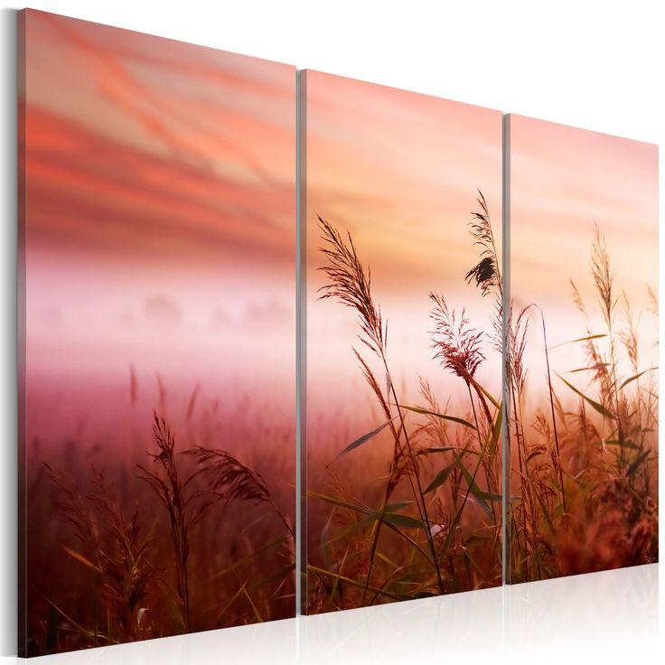 Obraz - Cicha łąka