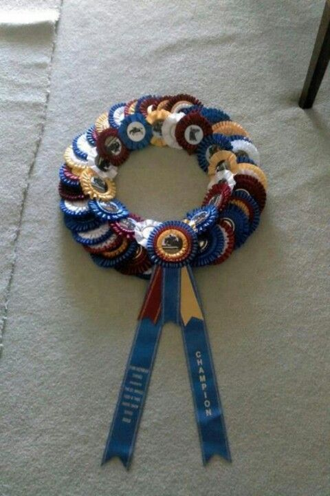 Horse show ribbons - we have so many this would be a great idea.