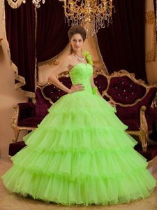 17 Best images about Lime Green Quinceanera Dresses 8 on Pinterest ...