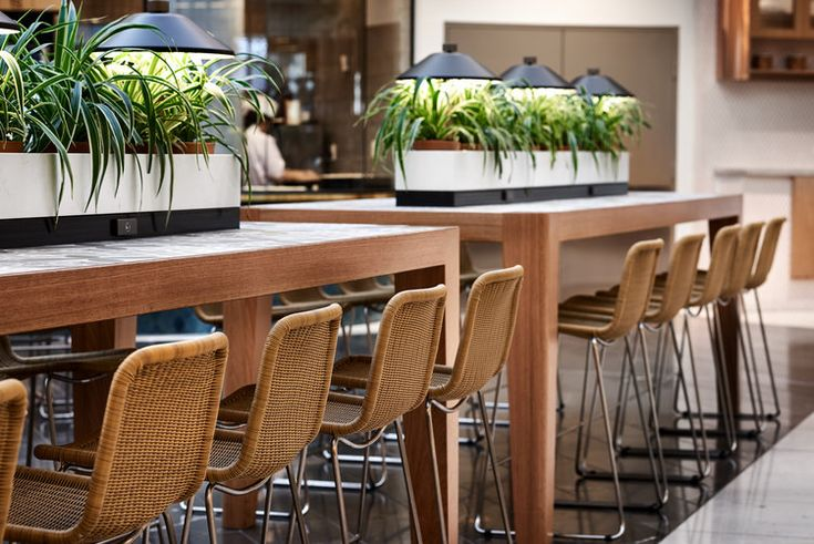 Food Central, Chadstone by MTRDC in collaboration with Code Design. Photography by Ryan Linnegar.