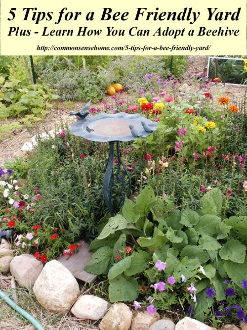 5 Tips for a Bee Friendly Yard - Turn your landscape into a bee safe oasis to protect our honeybees and native bees, plus beehive adoption info. #SaveTheBees #BeehiveAdoption