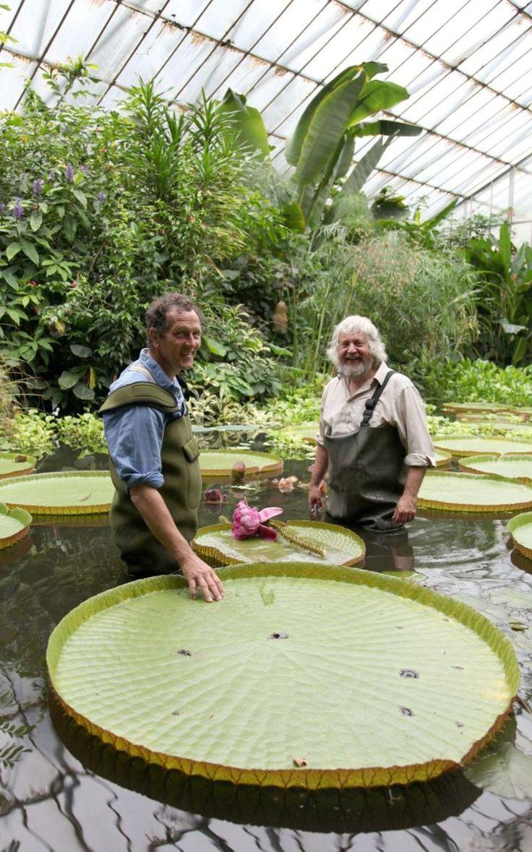 Monty Don At The Royal Botanical Gardens Edinburgh
