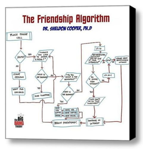 The Big Bang Theory Framed Sheldon Cooper Friendship Algorithym