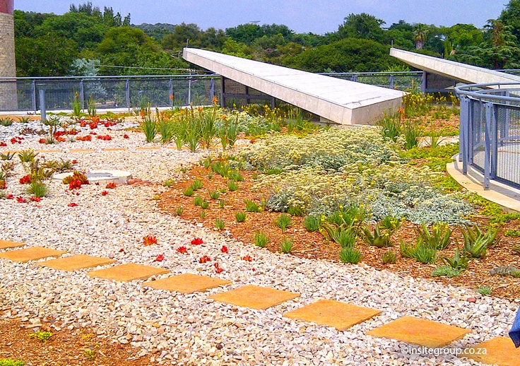 Green roof design by Insite landscape architects at SANRAL, South Africa