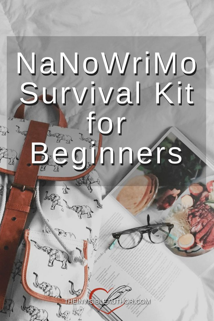 NaNoWriMo Survival Kit for Beginners. Camp NaNoWriMo. Writing Tools. Bullet Journals. Pens. Helpful How-To Books.