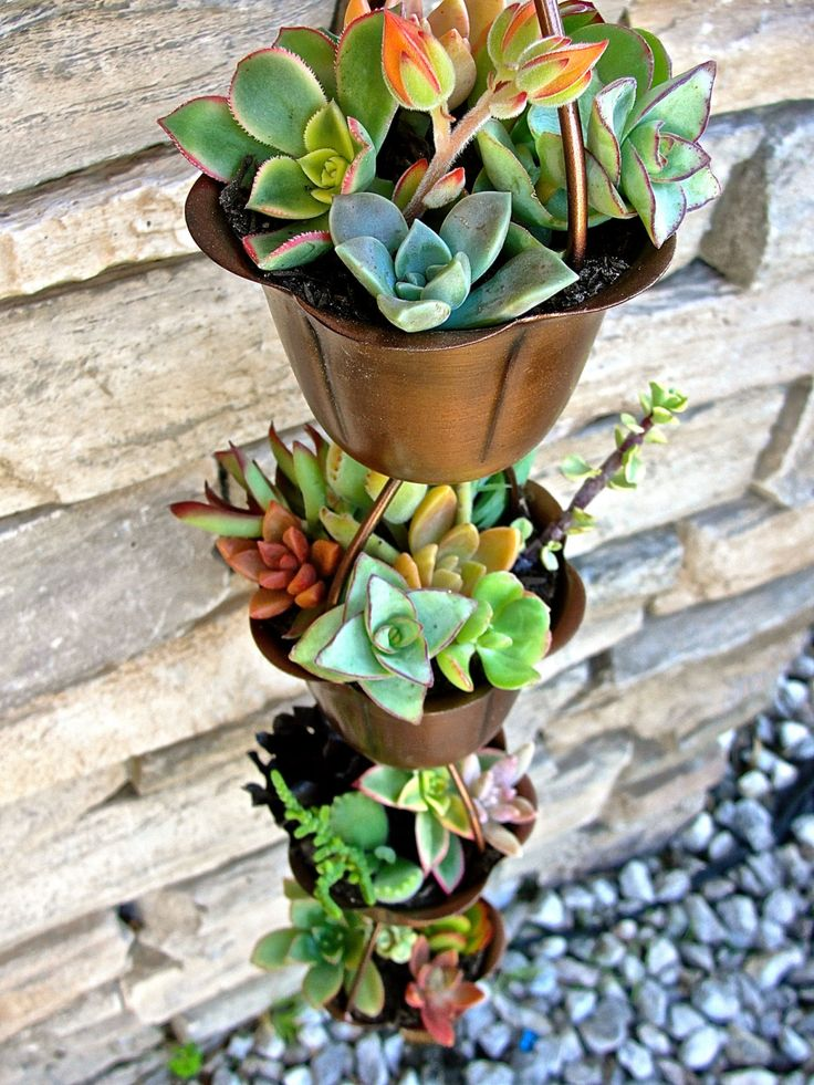Rain Chain Succulent Garden by TimeToThrive on Etsy
